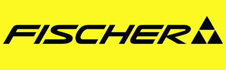 Image result for fischer skis logo